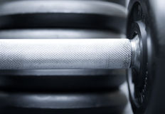 Dumbbells on grey stock images