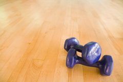 Dumbbells in gym. Dumbbells on the floor of a fitness studio with copy space Stock Photo