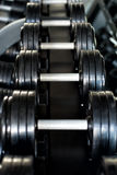Dumbbells in a gym Stock Photo