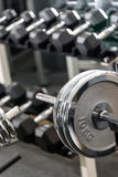 Dumbbells in a gym Royalty Free Stock Photography