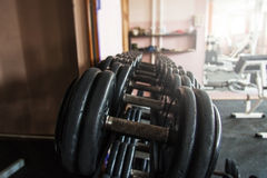 Dumbbells in a gym Stock Image