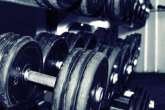 Dumbbells in a gym Royalty Free Stock Photos