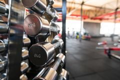 Sports dumbbells. dumbbells in the gym royalty free stock photography