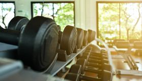 Dumbbells lie in a row on the inventory rack in the gym or fitness center. stock photos