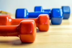 Dumbbells lined up, sports at home Stock Images