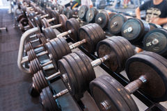 Dumbbells. A little rusty dumbbells on the rack Stock Images