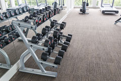 Dumbbells in modern sports club Royalty Free Stock Images