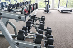 Dumbbells in modern sports club. Weight Training Equipment Stock Photo