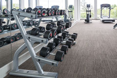 Dumbbells in modern sports club. Weight Training Equipment Royalty Free Stock Photography