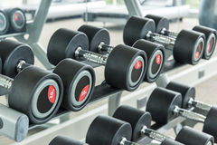 Dumbbells in modern sports club. Weight Training Equipment Royalty Free Stock Images