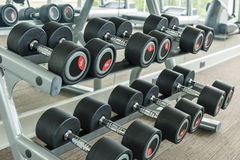 Dumbbells in modern sports club. Weight Training Equipment Royalty Free Stock Photos