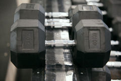 Dumbbells in modern sports club. Royalty Free Stock Photography