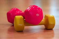 Dumbbells orange red Royalty Free Stock Photos