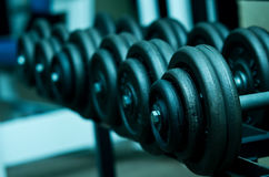 Dumbbells on rack. Blue toned image of heavy dumbbells on a rack in a gym stock photo