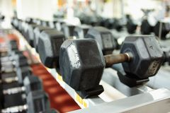 Dumbbells on the rack Stock Photos