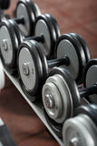 Dumbbells on the rack in the gym Royalty Free Stock Images