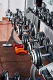Dumbbells on the rack in the gym Stock Photography