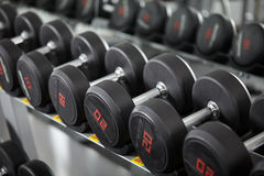 Dumbbells on the rack Stock Photo