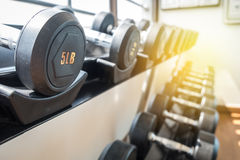 Dumbbells on rack. Weight dumbbells on rack in fitness room Stock Images