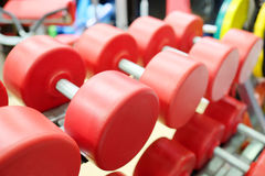 Dumbbells on the rest Royalty Free Stock Photo