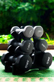 Dumbbells. Set of six dumbbells of different size and weight outdoors royalty free stock images