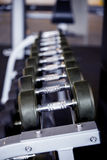 Dumbbells shallow depth of focus Stock Photography