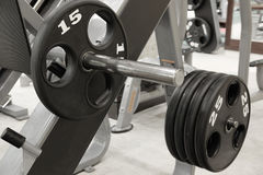 Dumbbells on a stand Royalty Free Stock Photo