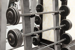 dumbbells on a stand Stock Photography