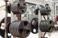 Dumbbells on a stand Royalty Free Stock Image
