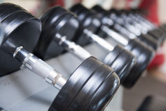 Dumbbells for weight lifting in fitness room Royalty Free Stock Images
