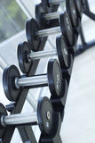 Dumbbells for weight lifting to exercise Stock Photography