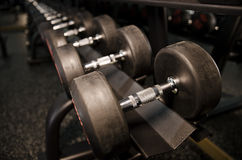Dumbbells weights in gym Stock Photo