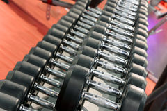 Dumbbells weights lined up in a fitness studio Royalty Free Stock Image