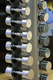 Dumbbells weights lined up in a fitness studio Stock Photography