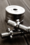 Dumbell and dumbell disc,close up Stock Photography