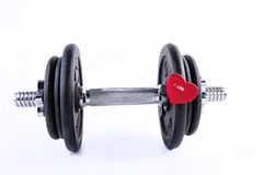 Dumbell isolated on the white Royalty Free Stock Image