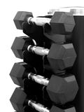 Dumbell Rack. A dumbell rack with dumbells isolated against a white background Stock Image