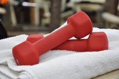 Dumbell rosso Fotografie Stock Libere da Diritti