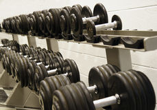 Dumbells. Rack of dumbells in a fitness training facility Royalty Free Stock Photo