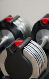 Dumbells ajustável Imagem de Stock Royalty Free