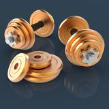 Dumbells do ouro Imagem de Stock