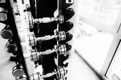 Dumbells en un gimnasio Fotografía de archivo