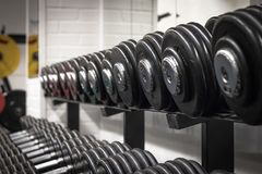 Dumbells in the rack. Dumbells are one of the most versatile tools you can use in the gym. Keep them organized in the rack Royalty Free Stock Photos