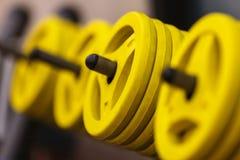 Dumbells para a aptidão em uma cremalheira no gym Fotografia de Stock Royalty Free