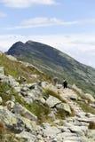 Dumbier, самая высокая вершина гор низкого Tatras Словакии Стоковое Фото