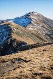 Dumbier is hoogste piek van Slowaakse bergen Lage Tatras, Slowakije Stock Afbeeldingen