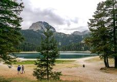 Dumitor nationalpark i den Montenegro svartsjön Fotografering för Bildbyråer