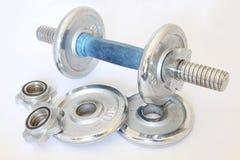 Dummkopf-Gewichte stockbild