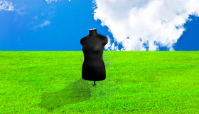 Dummy. Black female mannequin in the background of blue sky and green grass is very bright Stock Photography