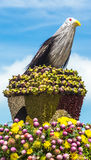 The dummy bird. Made of straw and the nest made of mangosteens rambutans and a lot of seeds Royalty Free Stock Photo